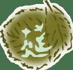 莚寿堂の葉っぱ